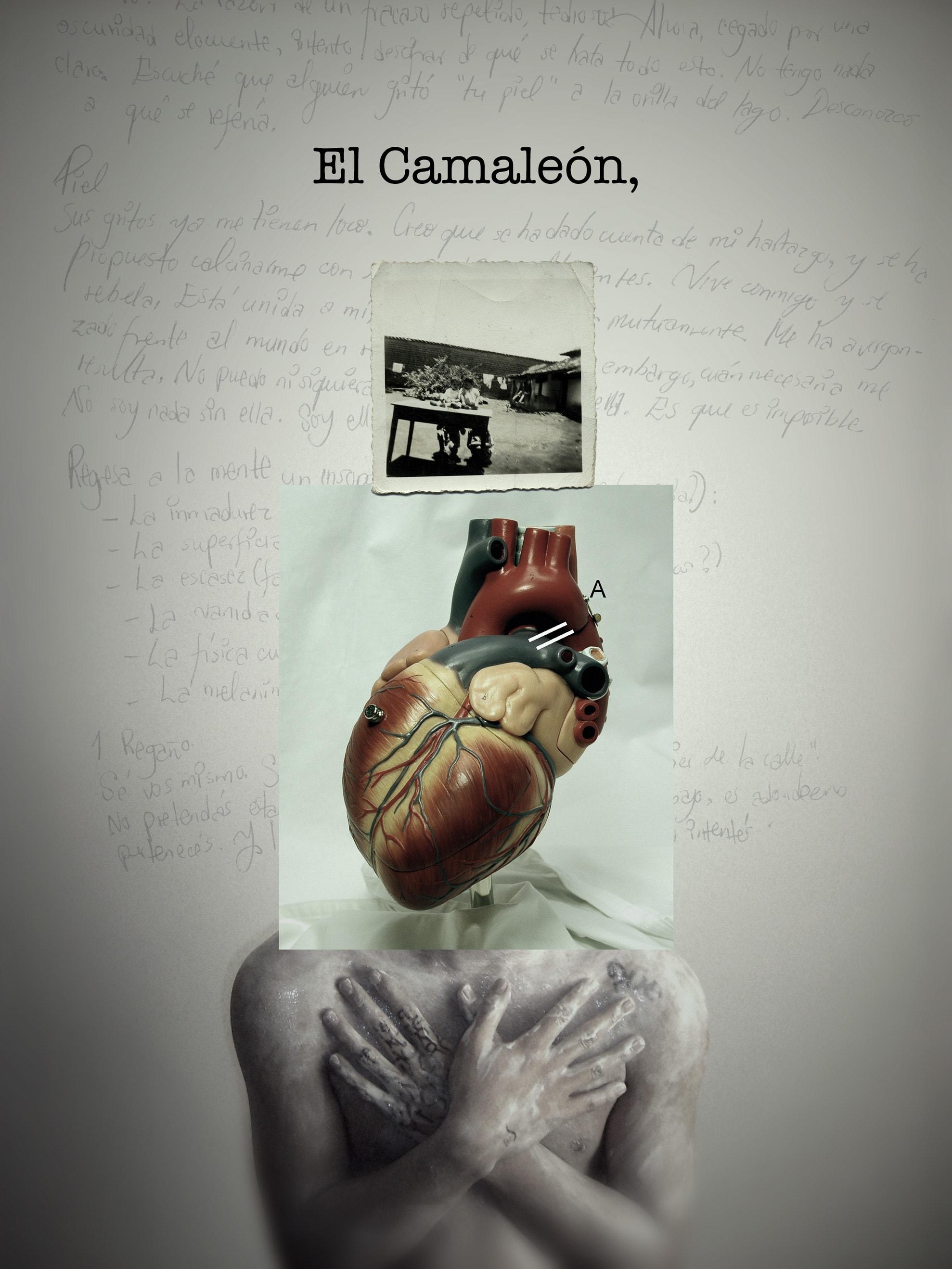 el-camaleon-02-victor-ruano