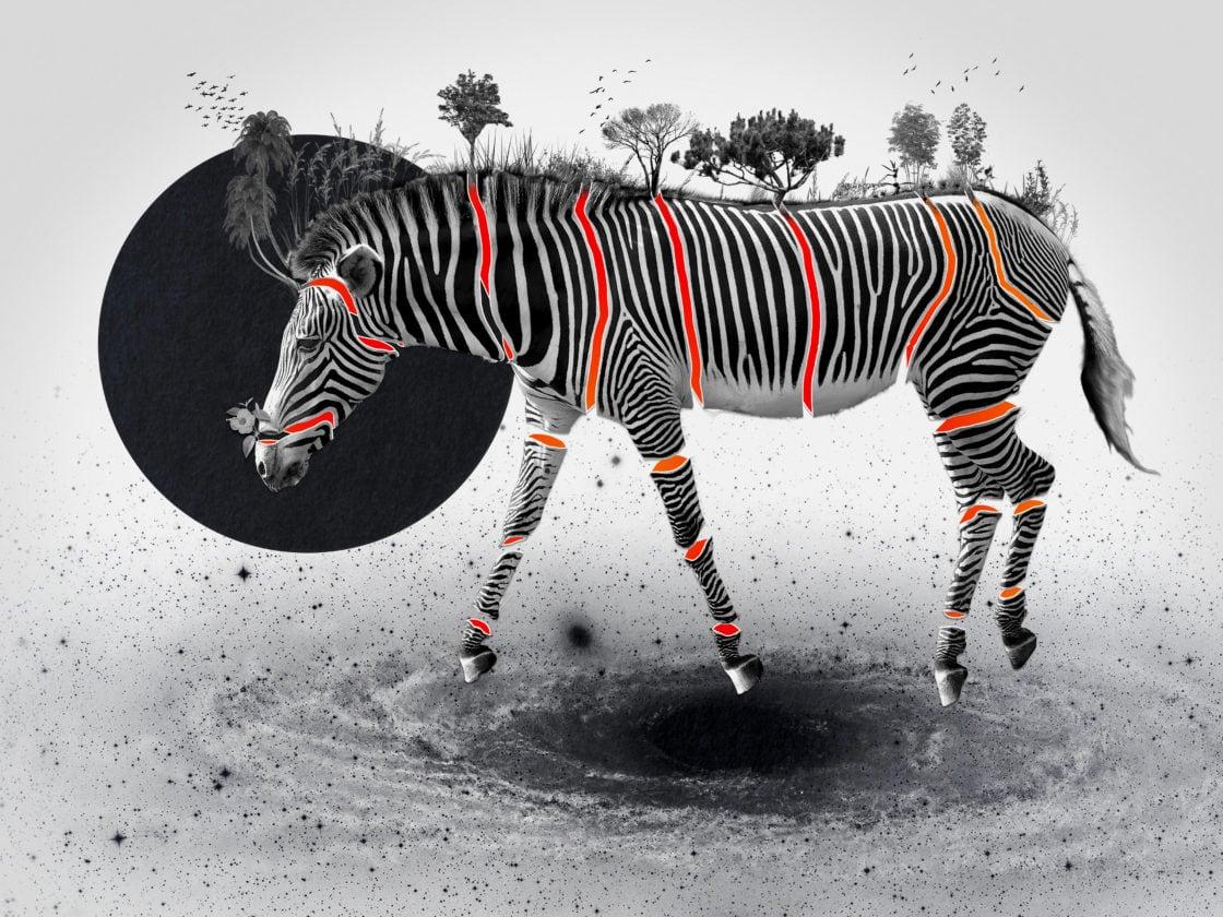 bestiario-zebra-victor-ruao-santasombra